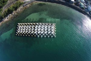海岸保全施設整備事業 上浦漁港海岸保全施設整備(第2期-1)